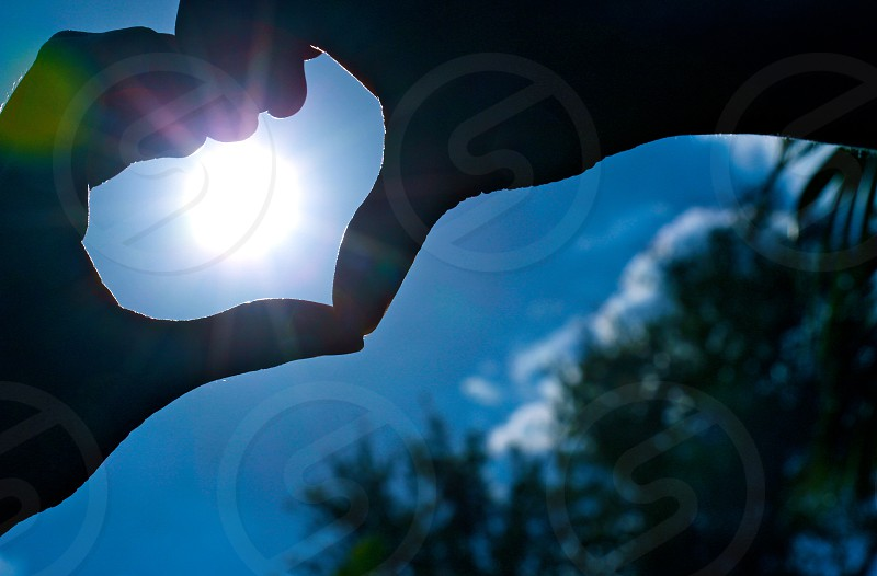 person doing heart hand sign beside green trees photo