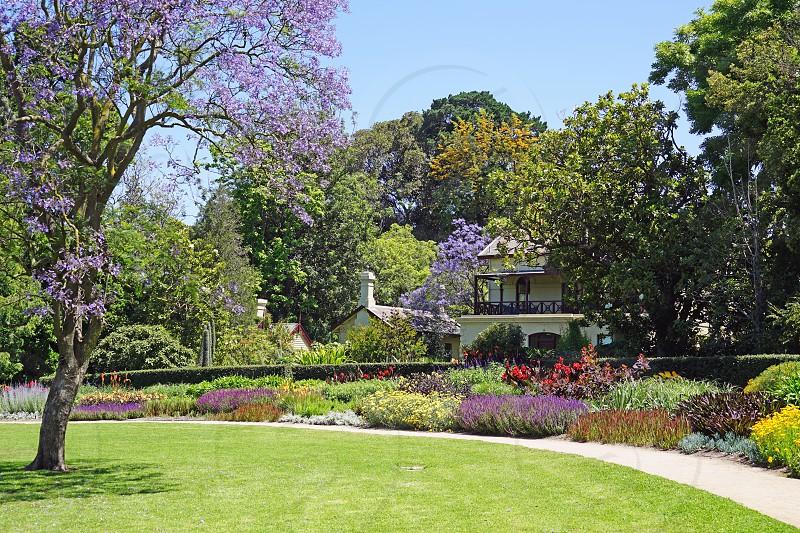 Royal Botanic Gardens Melbourne - Melbourne Victoria Australia photo