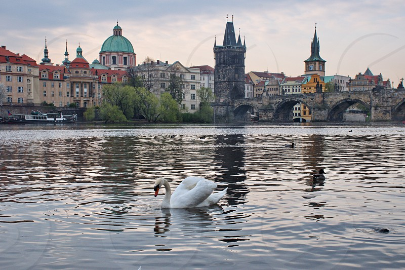 Cityscape of Prague over Vltava river photo