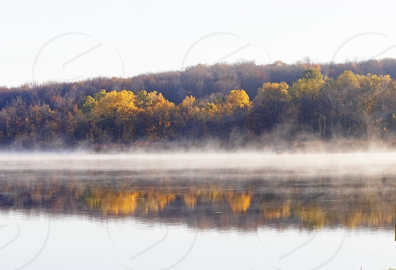 lake side lake fall day foliage leaves yellow early morning foggy morning photo