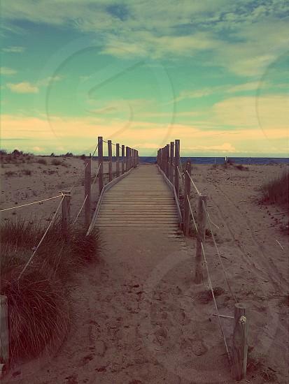 bridge wood beach photo