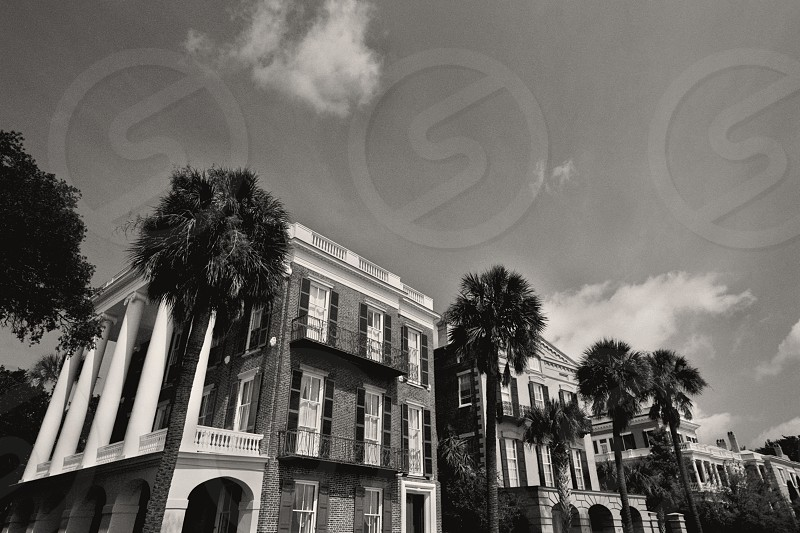 Wide angle composition of the Gorgeous Colonial Mansions that line the Battery in historic Charleston South Carolina.   photo