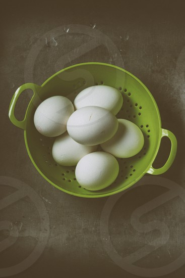 6 eggs on bowl  photo