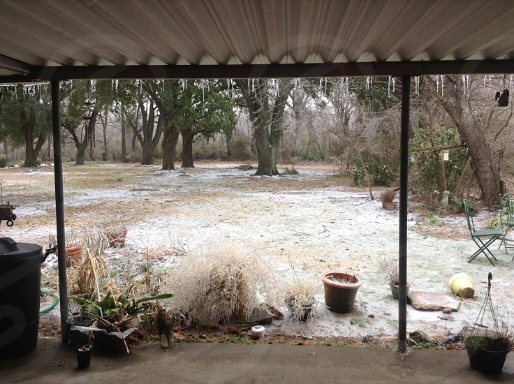 Ice Storm in Louisiana photo
