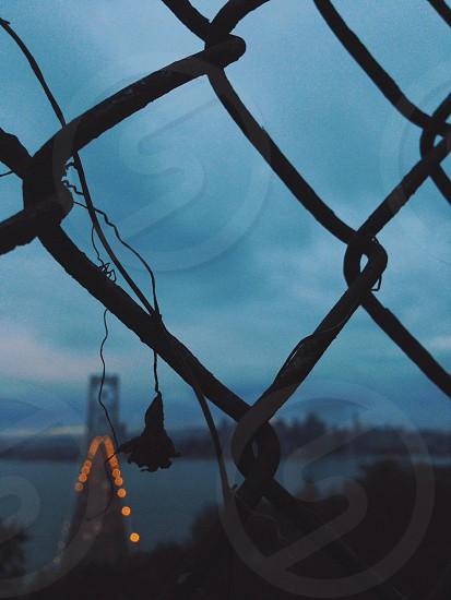 Early morning Bay Bridge from treasure Island photo