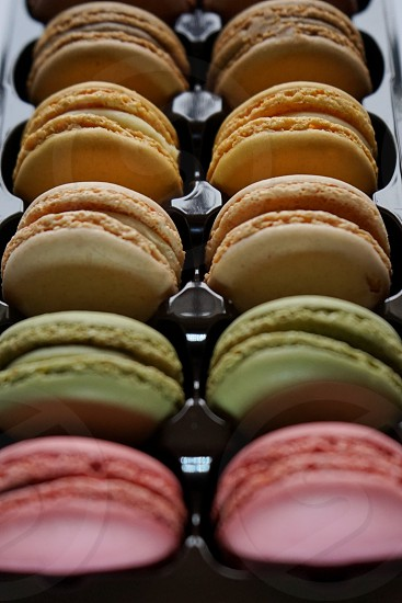 macarons  to gether in all colors photo