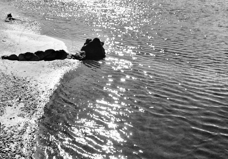seashore grayscale photography photo