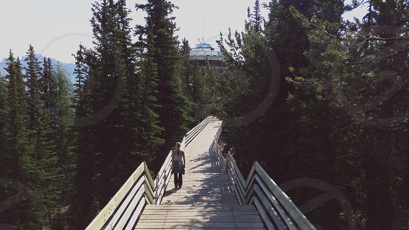 white wooden footbridge photo