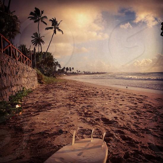Beach surfsandseasky photo
