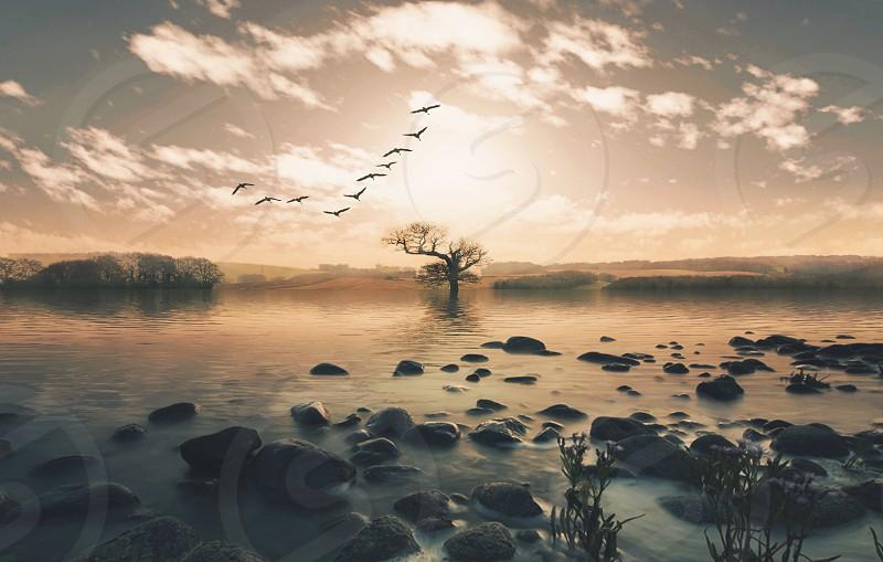 Landscapewaterrocksdramaticsky photo