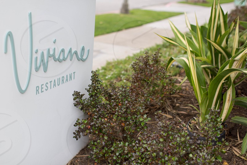 closeup photography viviane restaurant signboard beside green leaf plant near blacktop road during daytime photo