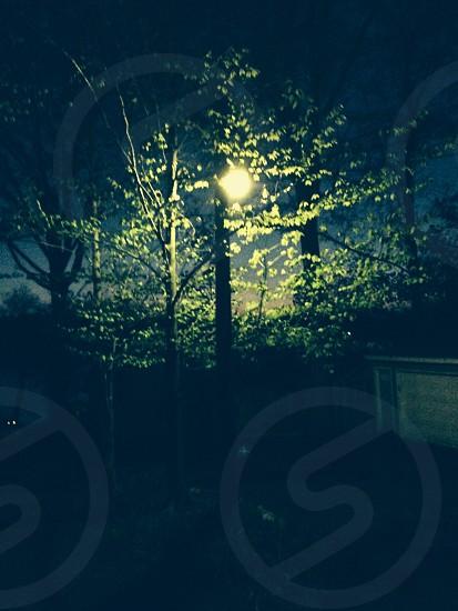 Night light or full moon? photo