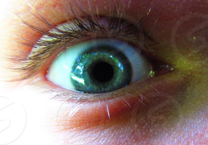 close up of green eye photo
