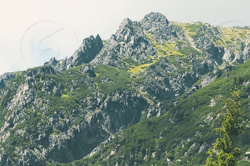 Mountain in High Tatras on a Summer Day photo