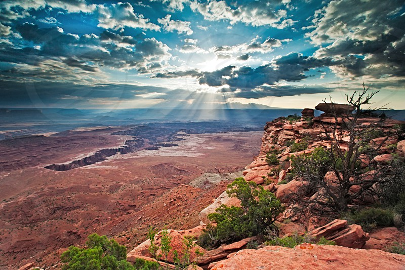 canyonlands national park sunrise clouds np overlook photo