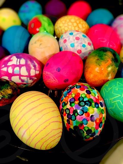 Hoppy Easter  photo