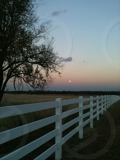 view of white wooden fence photo