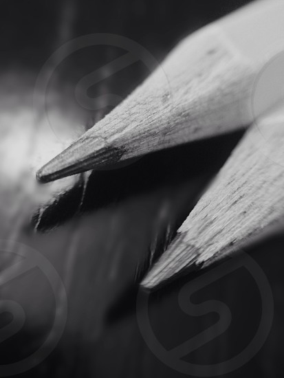 black and white photo of pencil photo
