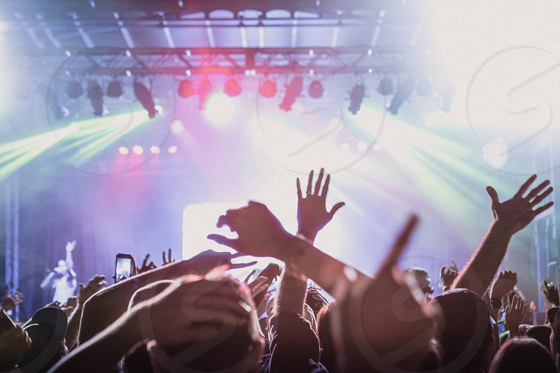Hands up at a live music event. photo
