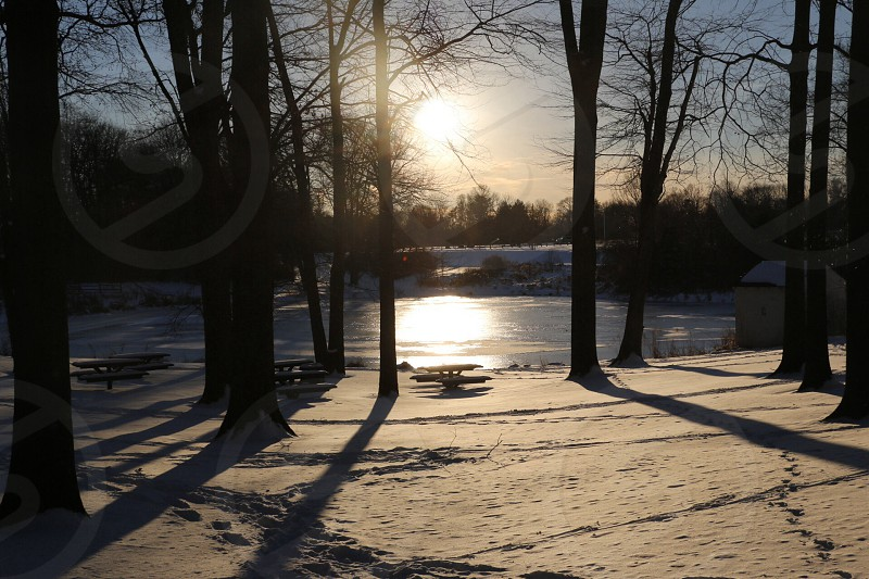 Winter Sun photo
