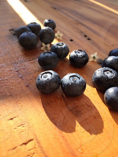 Fresh blueberries for a sunny morning.  photo