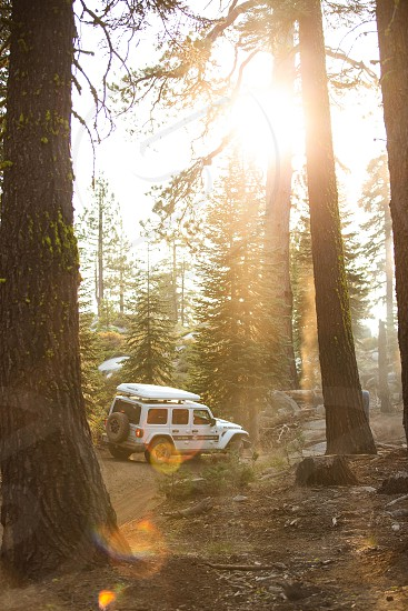 Perfect light on an off-road adventure.  photo