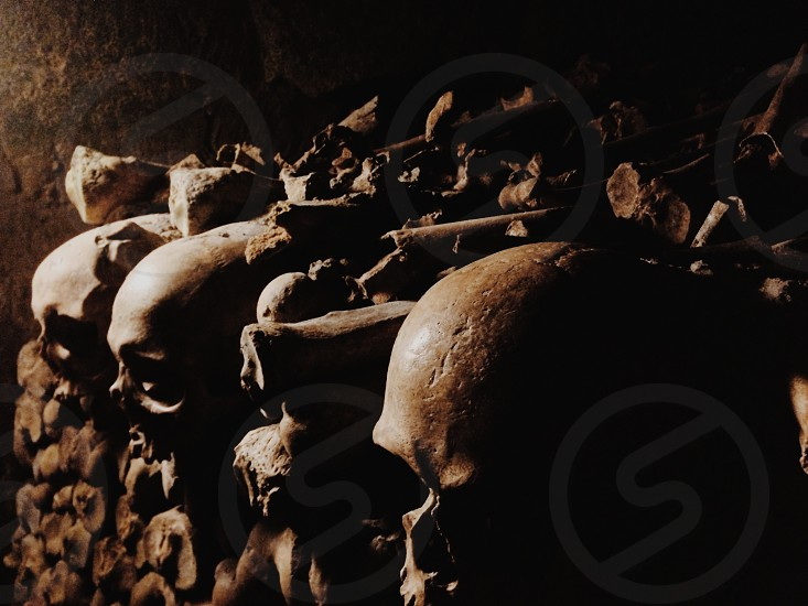 Catacombs.  photo