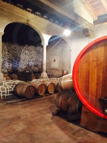 wine barrels in the cellar photo