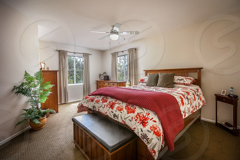 Interior of a residential home. Bedroom comfortable red plant fan house windows curtains table photo