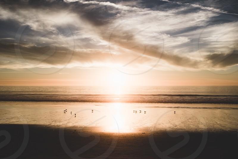 Sunset beach ocean. photo