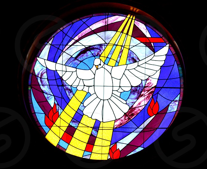 blue white and yellow tinted window with dove design photo