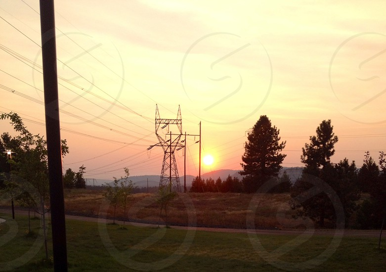 silhouette photo of trees and electric tower during sunset photo