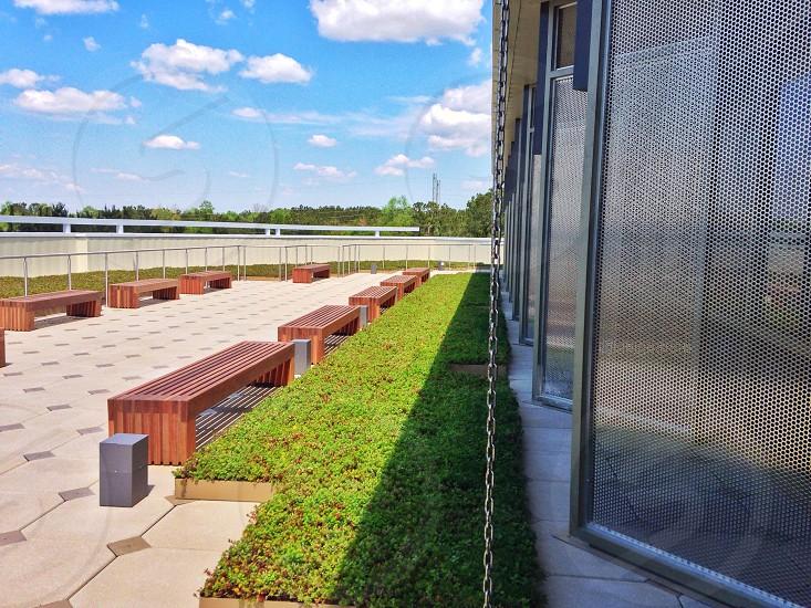 brown wooden bench near green grass  photo