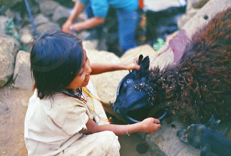 They're indigenous people from Sierra Nevada de Santa Marta Colombia. Photos show their cotidianity life and their relation with some animals.   photo