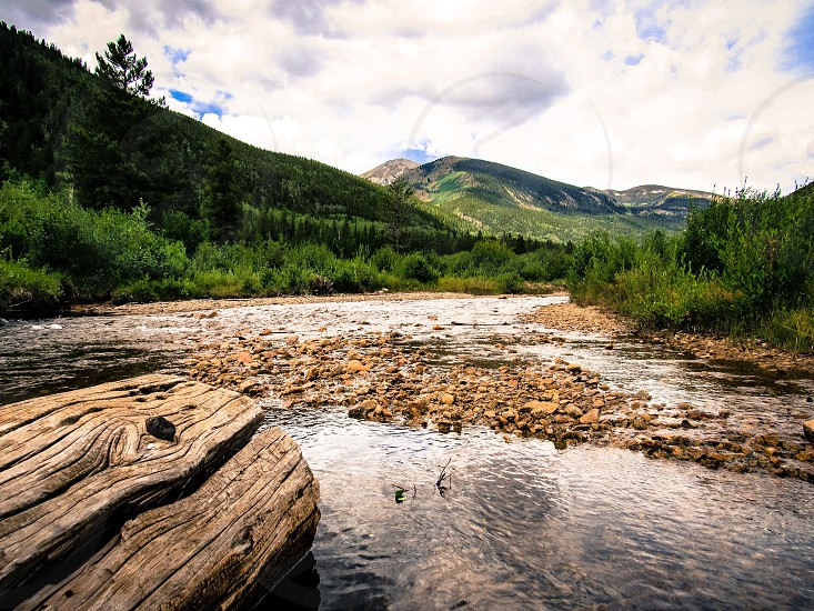 Mountains creek river water Colorado log rocks trees grass green color colorful summer travel adventure wanderlust photo