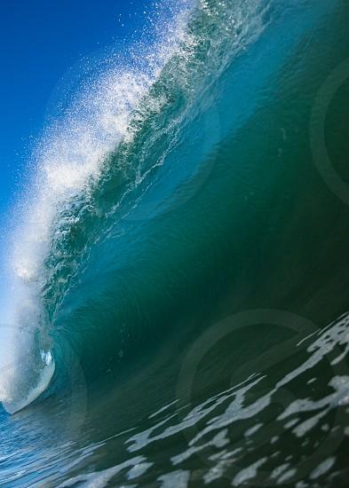 Ocean Lip photo
