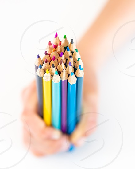 Pencils color hands wood wooden pencil photo