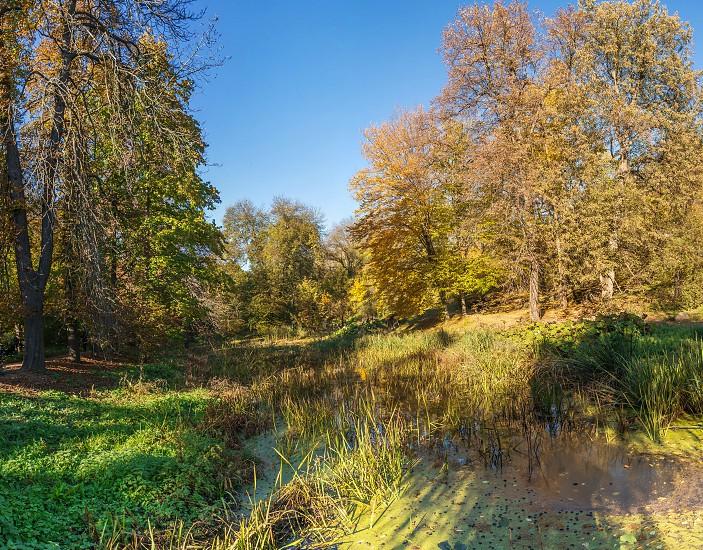 Amazing autumn around the old ponds in Sofiyivka park in Uman Ukraine photo