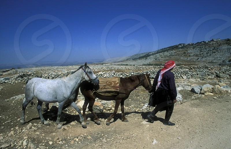 a farmer near the city of aleppo in Syria in the middle east photo