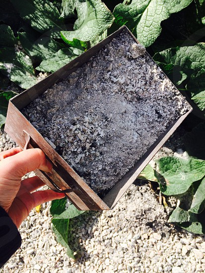 Fire wood ashes in it's container being emptied photo