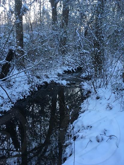 Creek in winter photo