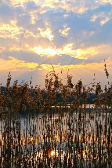 Sunset at the lake photo