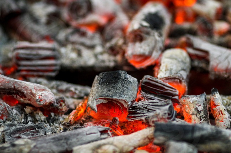 Fire charcoal burning barbecue food wood ash burn hot closeup  photo