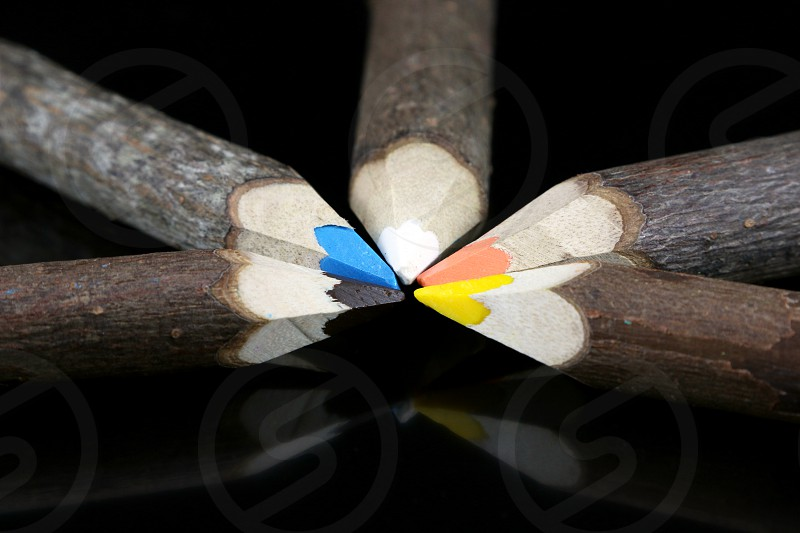 Wooden log colored pencils made of branches - isolated on a black background photo