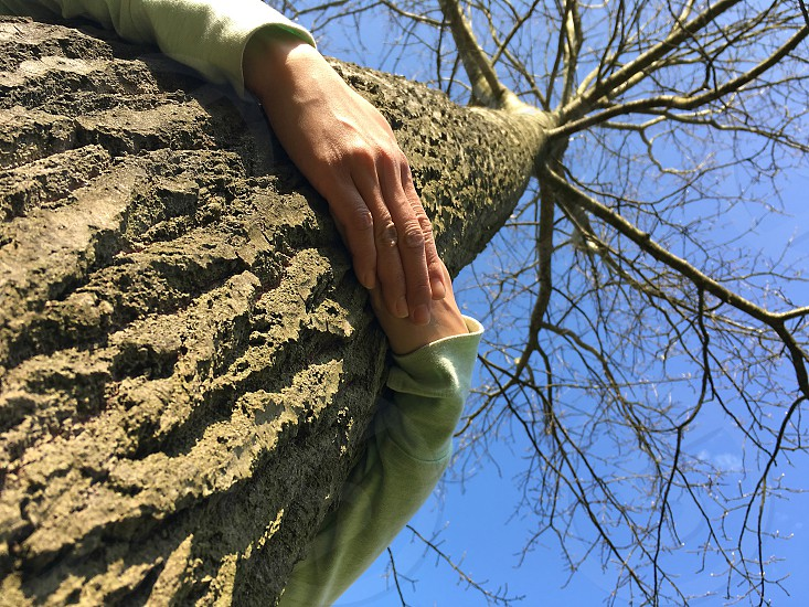 Low angle shot of a tree being tighly embraced hugged and cuddled by a woman showing her care for nature photo