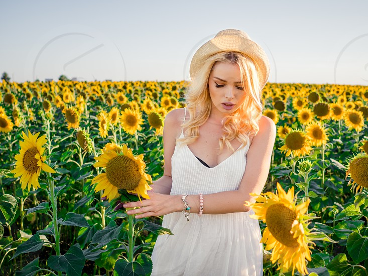 Young beautiful blonde woman standing in sunflower field. Sunset background. Sexy sensual portrait of girl in straw hat and white summer dress. photo