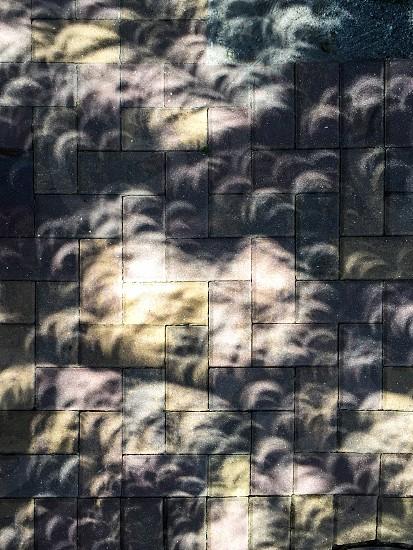 Solar Eclipse Shadows 8-21-2017 photo