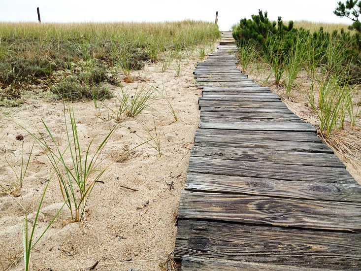 Beach path coast ocean New England coastal photo
