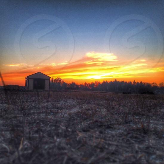 A Cranberry Bog Sunset. photo