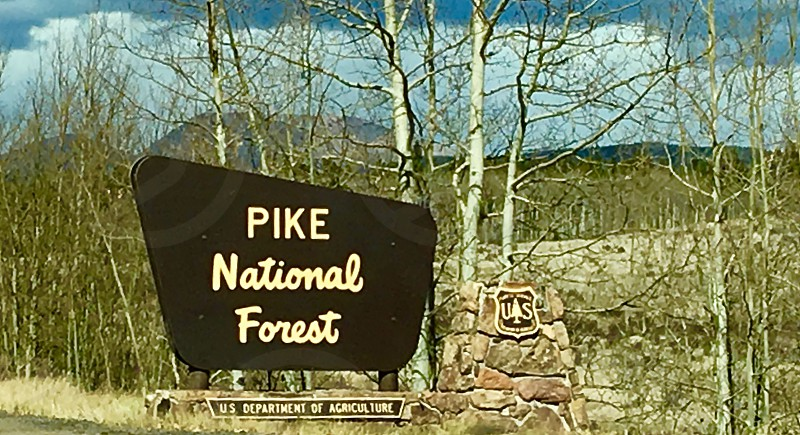 Pike National Forest signage near trees at daytime photo